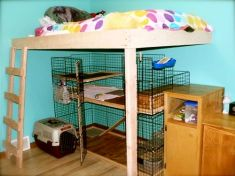 Bunny Condo Sample 7